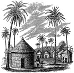 Amistad Revolt: Village in Mendi with palm trees as described by the Africans