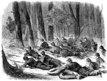 Battle of Seven Pines: Picketts in the Woods