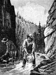 California Gold Rush: Washing Out Gold