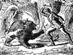 Davy Crockett Pictures: A Fight at Close Quarters