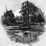 Fort Donelson Civil War: branch of Hickman's Creek Near James Crisp's House - The left on Gen. Smith's Line