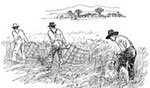 History of Farming: Farmers Cradling the Wheat