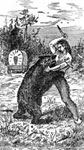 James Butler Hickok: Wild bill's Fight with the Bear