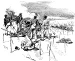 Malvern Hill Battlefield: Repulse of the Confederates on the slope of Crew's HIll