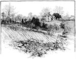 Malvern Hill: The Parsonage Near Malvern Hill - Used as a Confederate Hospital after the Fight