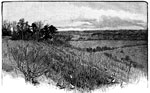 Malvern Hill: Scene of the Confederate Attack on the West Side of Crew's hill