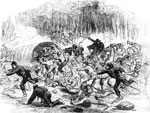 Manassas Battlefield: The Stampede at the Battle of Manassas