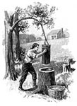 Pictures of Daniel Boone: Boone Pounding Corn