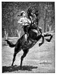 Pictures of George Washington: Washington Breaking a Colt