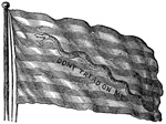 Revolutionary War Flags: Rattlesnake Flag