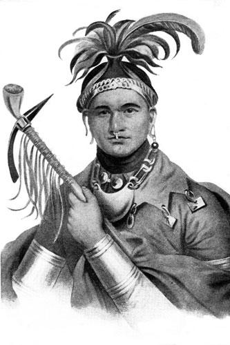 The mandan tribe