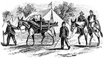 Shiloh Battle: Mules Carrying Wounded Men