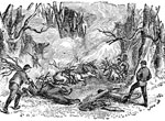 Shiloh Battlefield: Shiloh Battlefield