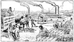 U.S. Cotton: Loading Cotton on the Mississippi River Boats at New Orleans